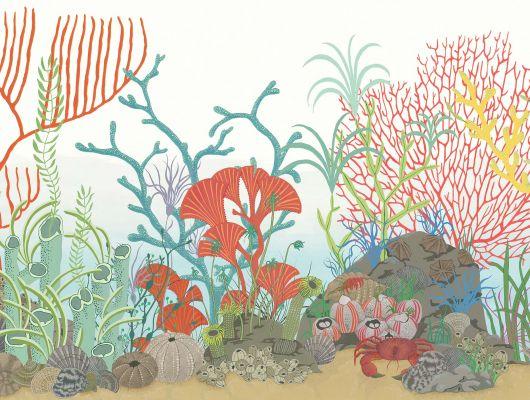 Обои art 103/12054 Флизелин Cole & Son Великобритания, Whimsical, Английские обои, Бордюры для обоев, Обои для прихожей, Хиты продаж