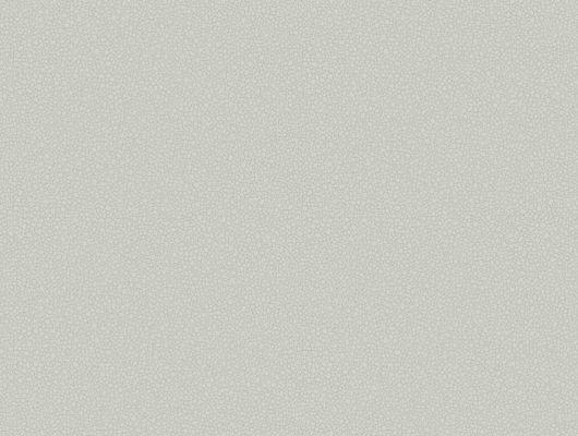 Обои с рисунком из мелкой гальки нежно серого цвета для ценителей прекрасного, Landscape Plains