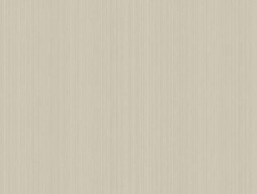 Светло коричневые обои с нано полоской вызовут восторг у ваших гостей, Landscape Plains