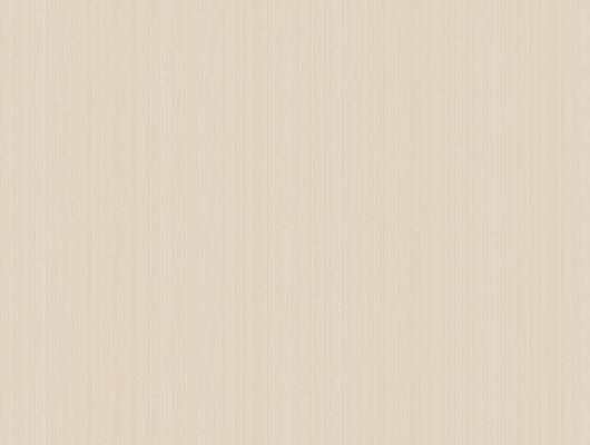 Чудесные обои цвета неспелого персика превнемсут в ваш дом предвесеннее настроение, Landscape Plains