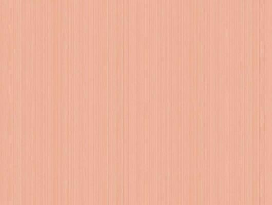 Розовые полосатые обои с уникальной шириной полос, Landscape Plains