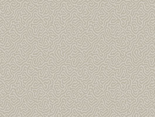 Обои art 107/4019 Флизелин Cole & Son Великобритания, Curio, Английские обои