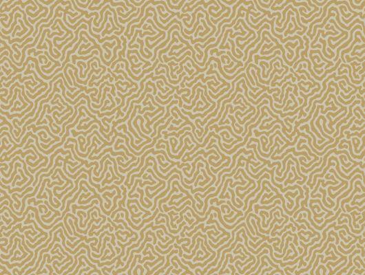Обои art 107/4021 Флизелин Cole & Son Великобритания, Curio, Английские обои