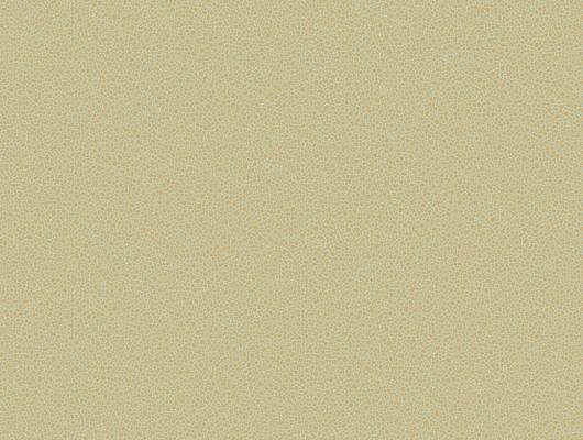 Обои art 107/9041 Флизелин Cole & Son Великобритания, Curio, Английские обои