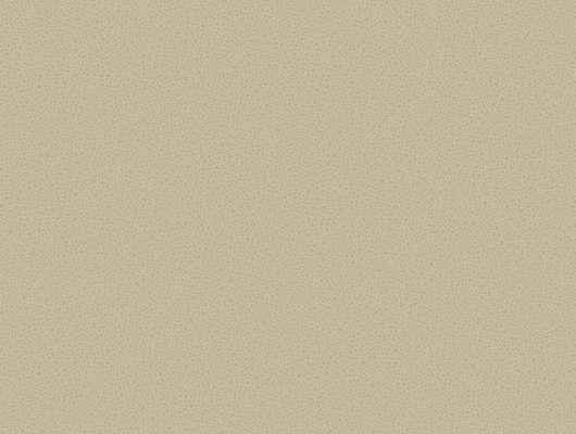 Обои art 107/9042 Флизелин Cole & Son Великобритания, Curio, Английские обои