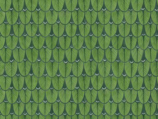 Обои в прихожую с чудесным мелким орнаментом из банановых листьев зеленого цвета, Ardmore, Английские обои, Дизайнерские обои, Обои для прихожей, Хиты продаж