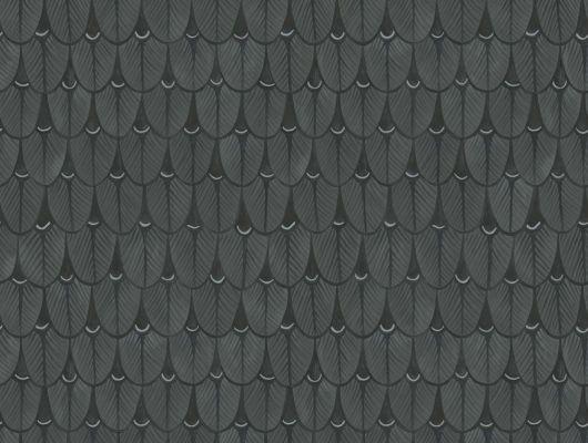 Комнатные обои черного цвета с рисунков из тропических листьев купить в Москве, Ardmore, Английские обои, Обои для комнаты