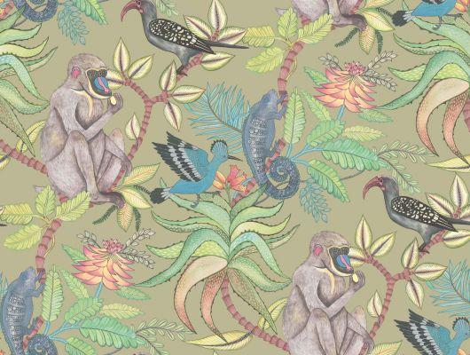 Обои для гостиной комнаты из Англии с огромным рисунком тропического дерева, с живущими на нем обезьянами, птицами и хамелеонами, Ardmore, Английские обои, Дизайнерские обои, Новинки, Обои для гостиной