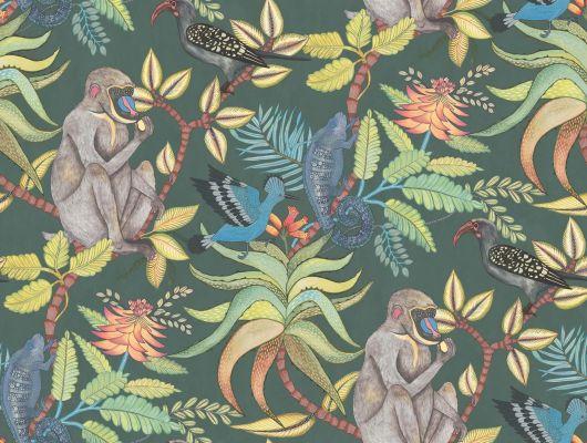 Красочные обои для комнаты с мохнатыми обезьянками, игривыми птицами и настороженными хамелеончиками на темном фоне заказать с доставкой до квартиры, Ardmore, Английские обои, Обои для комнаты