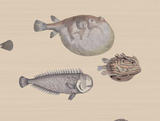 Обои для спальни с красивым дизайном из морских рыб на бежевом фоне где купить, Fornasetti Senza Tempo, Английские обои, Детские обои, Хиты продаж