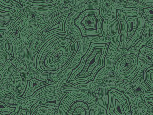 Кабинетные обои с точной имитацией линейной текстуры и черно-зеленого цвета малахита, Fornasetti Senza Tempo, Английские обои, Обои для кабинета, Хиты продаж