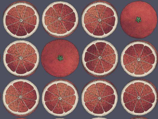 Сочные красные апельсины на черном фоне на обоях от Cole and Son станут примечательным элементом декорирования прихожей или коридора, Fornasetti Senza Tempo, Английские обои, Обои для прихожей, Хиты продаж