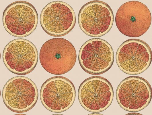 Обои от известного дизайнера Форназетти с изображением сочных апельсинов на бежевом фоне, отлично впишется в интерьер любой комнаты в вашем доме, Fornasetti Senza Tempo, Английские обои, Дизайнерские обои, Новинки, Обои для комнаты