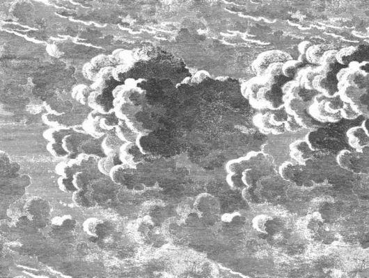 Обои на флизелиновой основе с иллюстрацией черно белого неба выполненного техникой мелких штрихов, Fornasetti, Fornasetti Senza Tempo, Английские обои, Обои для гостиной, Обои для прихожей, Флизелиновые обои
