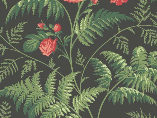 """Обои Cole & Son - """"Rose"""" арт. 115/10030. Классика англиских паттернов с изображением прекрасной розы.Королева и украшение любого сада расцветает в окружении папоротника на угольном фоне, красного и лиственно-зелёного цвета. Обои в Москве, адреса магазинов, каталог обоев, Botanical Botanica, Обои для гостиной, Обои для спальни"""