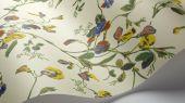 """Обои Cole & Son - """"Sweet Pea"""" арт. 115/11032. Обновлённый дизайн представлен в современных сочетаниях: вишнёвый и маджента на фоне цвета вер-гинье, охра и розовый на пергаментном фоне. Обновлённый дизайн представлен в современных сочетании охры и розового и желтого с синим на пергаментном фоне. Обои в Москве, адреса магазинов, каталог обоев"""