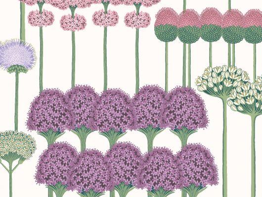 """Обои Cole & Son - """"Allium"""" арт. 115/12034 . Цветочный паттерн, создает геометричный рисунок с изображением луковичных растений цвета шелковицы, розовых румян и сиреневом на белом фоне. Английские обои, Обои Cole & Son, Каталог обоев, Botanical Botanica, Обои для гостиной, Обои для кухни, Обои для спальни"""