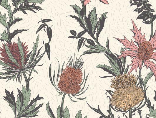 """Обои Cole & Son - """"Thistle"""" арт. 115/14043. Неординарные цветы чертополоха графично выполнены в розовых и оранжевых тонах на светлом фоне. Смелый дизайн напечатан методом шелкографии и имеет благородный матовый финиш. Обои в Москве, адреса магазинов, каталог обоев, Botanical Botanica, Обои для гостиной"""