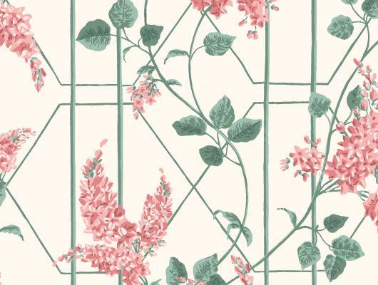 """Обои Cole & Son - """"Wisteria"""" арт. 115/5012 в интерьере. Классичекий мотив трельяжной решетки, так полюбившийся многим из нас, дополнен соцветиями глицинии и будет украшать Ваши стены в течении всего года! Обои в спальню, купить в магазине Одизайн, бесплатная доставка, Botanical Botanica, Обои для гостиной, Обои для кухни, Обои для спальни"""