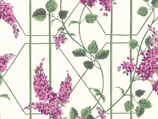 """Обои Cole & Son - """"Wisteria"""" арт. 115/5013 в интерьере. Классичекий мотив трельяжной решетки, так полюбившийся многим из нас, дополнен соцветиями глицинии и будет украшать Ваши стены в течении всего года! Обои в гостиную, стильные обои, флизелиновые обои, Botanical Botanica, Обои для гостиной, Обои для кухни, Обои для спальни"""