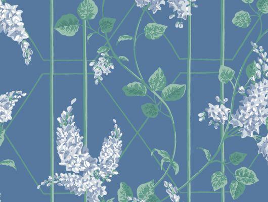 """Обои Cole & Son - """"Wisteria"""" арт. 115/5015. Классичекий мотив трельяжной решетки, так полюбившийся многим из нас, дополнен соцветиями глицинии и будет украшать Ваши стены в течении всего года! Обои в спальню, купить в магазине Одизайн, бесплатная доставка, Botanical Botanica, Обои для гостиной, Обои для спальни"""