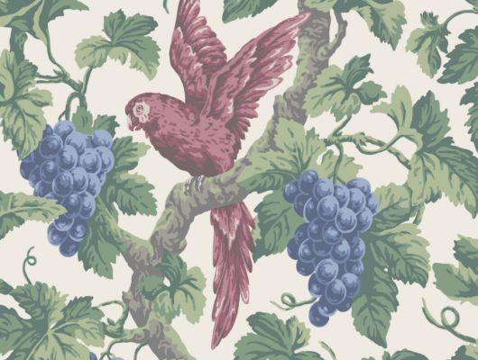 Рисунок красного попугая, садящегося на зеленую ветку, богатую спелыми синими виноградинами, на белом фоне, на обоях от Cole and Son, будет чудесно смотреться в кабинете заказать с доставкой на дом, The Pearwood Collection, Английские обои, Обои для кабинета, Обои с рисунком, Хиты продаж