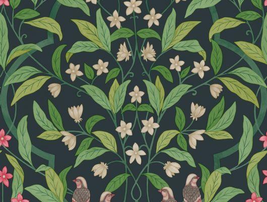 Флизелиновые обои пр-во Великобритания коллекция Seville от Cole & Son, рисунок под названием Jasmine & Serin Symphony изящный растительный узор с птицами на черном фоне. Обои для гостиной, обои для спальни, обои для кухни. Онлайн оплата, большой ассортимент, купить обои в интернет-магазине Одизайн, Seville, Обои для гостиной, Обои для кухни, Обои для спальни