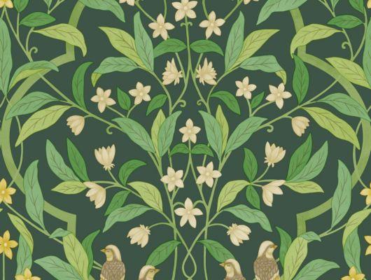 Флизелиновые обои пр-во Великобритания коллекция Seville от Cole & Son, рисунок под названием Jasmine & Serin Symphony изящный растительный узор с птицами на зеленом фоне. Обои для гостиной, обои для спальни, обои для кухни. Онлайн оплата, большой ассортимент, купить обои в интернет-магазине Одизайн, Seville, Новинки, Обои для гостиной, Обои для кухни, Обои для спальни