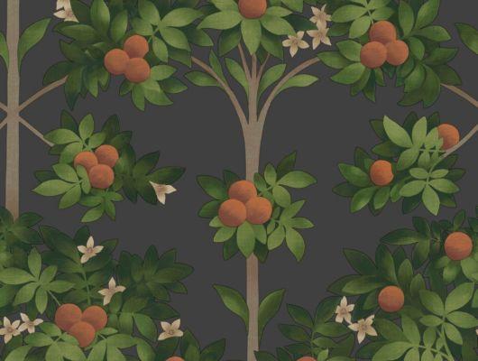 Флизелиновые обои пр-во Великобритания коллекция Seville от Cole & Son, с рисунком под названием Orange Blossom фруктовые деревья на темном фоне. Обои для гостиной, обои для спальни. Онлайн оплата, большой ассортимент, бесплатная доставка, Seville, Дизайнерские обои, Обои для гостиной, Обои для спальни