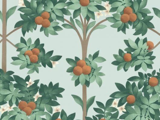 Флизелиновые обои пр-во Великобритания коллекция Seville от Cole & Son, с рисунком под названием Orange Blossom фруктовые деревья на светло-голубом фоне. Обои для гостиной, обои для кухни, обои для спальни. Онлайн оплата, большой ассортимент, бесплатная доставка, Seville, Обои для гостиной, Обои для кухни, Обои для спальни