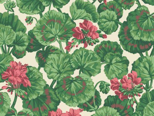 Флизелиновые обои пр-во Великобритания коллекция Seville от Cole & Son, рисунок под названием Geranium яркий цветочный принт на белом фоне. Обои для гостиной, обои для спальни. Бесплатная доставка, купить обои, большой ассортимент, Seville, Новинки, Обои для гостиной, Обои для кухни, Обои для спальни