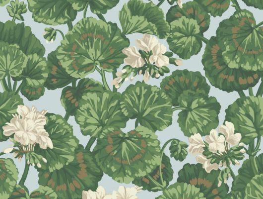 Флизелиновые обои пр-во Великобритания коллекция Seville от Cole & Son, рисунок под названием Geranium цветочный принт на голубом фоне. Обои для гостиной, обои для спальни, обои для кухни. Бесплатная доставка, купить обои, большой ассортимент, Seville, Обои для гостиной, Обои для кухни, Обои для спальни