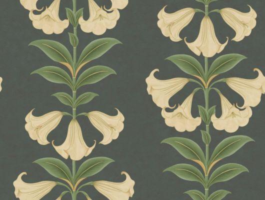 Флизелиновые обои пр-во Великобритания коллекция Seville от Cole & Son, с рисунком под названием Angel's Trumpet растительный рисунок в стиле ботанической иллюстрации  в темных тонах. Обои для гостиной, обои для спальни, обои для коридора. Большой ассортимент, бесплатная доставка, купить обои, Seville, Дизайнерские обои, Новинки, Обои для гостиной, Обои для спальни
