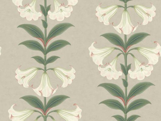 Флизелиновые обои пр-во Великобритания коллекция Seville от Cole & Son, с рисунком под названием Angel's Trumpet растительный рисунок в стиле ботанической иллюстрации  в светлых тонах. Обои для гостиной, обои для спальни, обои для кухни. Большой ассортимент, бесплатная доставка, купить обои, Seville, Обои для гостиной, Обои для кухни, Обои для спальни
