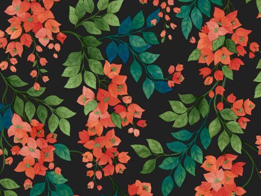 Флизелиновые обои пр-во Великобритания коллекция Seville от Cole & Son, переливающийся цветочный рисунок под названием Bougainvillea на темном фоне. Обои для спальни, обои для кухни, обои для гостиной. Купить обои в салоне Одизайн, большой ассортимент, бесплатная доставка, Seville, Дизайнерские обои, Обои для гостиной, Обои для кухни, Обои для спальни