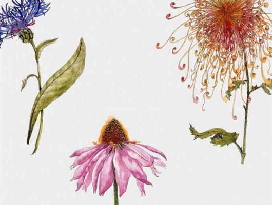 Мир цветов всегда тянет к себе своими невероятными узорами и ароматами, с помощью  дизайна обоев Fardis - Hunza, мы можем позволить себе рассматривать великолепные соцветия круглый год! Энергичное сочетание сочных оттенков на фоне структурного металлика кремового оттенка в арт. 117034. Выбрать, заказать, оплатить., SHANGRI LA, Новинки, Обои для гостиной, Обои для кухни, Обои для спальни, Хиты продаж