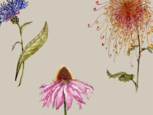 Мир цветов всегда тянет к себе своими невероятными узорами и ароматами, с помощью  дизайна обоев Fardis - Hunza, мы можем позволить себе рассматривать великолепные соцветия круглый год! Энергичное сочетание сочных оттенков на фоне структурного металлика цвета шампанского в арт. 117035. Стильный интерьер, дизайнерские обои, цена., SHANGRI LA, Обои для гостиной, Обои для кухни, Обои для спальни