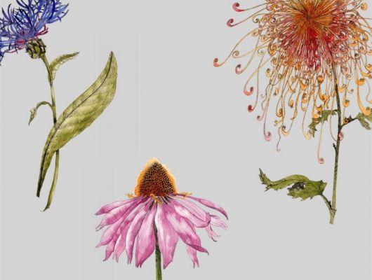 Мир цветов всегда тянет к себе своими невероятными узорами и ароматами, с помощью  дизайна обоев Fardis - Hunza, мы можем позволить себе рассматривать великолепные соцветия круглый год! Энергичное сочетание сочных оттенков на фоне структурного металлика сиреневого цвета в арт. 117034. Английские обои, Обои Fardis, Каталог обоев., SHANGRI LA, Обои для гостиной, Обои для кухни, Обои для спальни