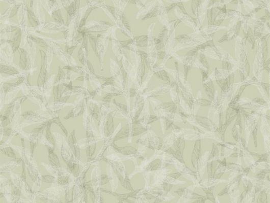 Дизайн обоев Nagar от Fardis представляет Вашему вниманию растительный орнамент, где листья и лепестки частично накладываясь друг на друга создают неподвластный времени образ, а структурный металлик оливкового оттенка создаст ощущение единения с природой - арт. 117055. Обои для квартиры, обои на стену, дизайнерские обои., SHANGRI LA, Обои для гостиной, Обои для кухни, Обои для спальни