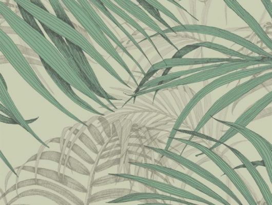 Обои Fardis - Maui  создают ощущение параллельного мира в с тропическими пальмами тихоокеанских стран. Арт. 117066 выполнен на фоне структурного металлика оливкового цвета с листьями зеленого и   серо-бежевого оттенка, создающие ощущение глубины в пространстве. Стильный интерьер, дизайнерские обои, цена., SHANGRI LA, Обои для гостиной, Обои для кабинета, Обои для спальни