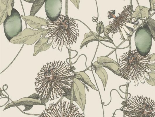 Обои Fardis - Skardu арт. 117076, где представлен изысканный растительный узор из вьющихся стеблей страстоцвета, украшенного необычными цветами и красочными плодами зелёных оттенков, на фоне структурного металлика кремового цвета. Стильный интерьер, дизайнерские обои, стоимость., SHANGRI LA, Обои для гостиной, Обои для кухни, Обои для спальни