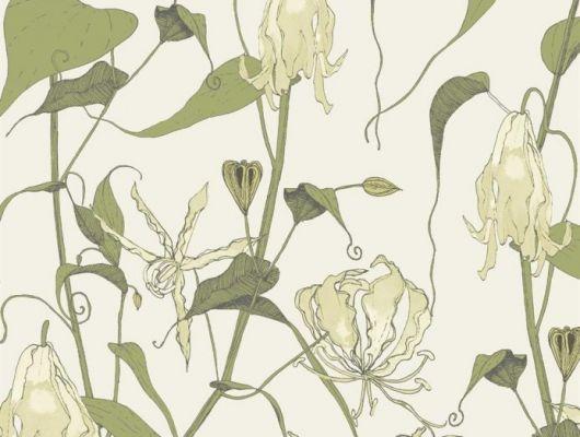 Флизелиновые обои арт. 117082 с растительным орнаментом, где на фоне структурного металлика кремового цвета, красиво разросшиеся стебли вьюнка плетут экзотический трельяж этого прекрасного цветочного дизайна с изюминкой. Английские обои, Обои Fardis, Каталог обоев., SHANGRI LA, Обои для гостиной, Обои для кухни, Обои для спальни