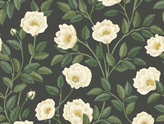 """Английские флизелиновые обои, арт. 118/7016 """"Hampton Roses"""", бренда Cole & Son , из коллекции Great Masters . Обои для гостиной с изображением Хэмптонских роз на черном фоне. Классический английский мотив. Купить в Москве с бесплатной доставкой, широкий ассортимент., HRP - Great Masters, Английские обои, Обои для гостиной, Обои для кабинета, Обои для спальни, Обои с цветами"""