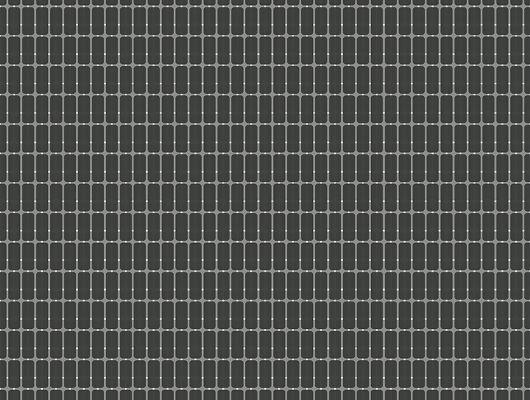 Флизелиновые обои из Швеции коллекция Scandinavian Designers III от Borastapeter M.I.T.Ритмичный геометрический рисунок в виде сетки, Scandinavian Designers III, Обои в клетку, Обои для гостиной, Обои для кабинета, Флизелиновые обои