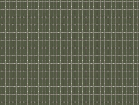 Флизелиновые обои из Швеции коллекция Scandinavian Designers III от Borastapeter M.I.T.Ритмичный геометрический рисунок в виде сетки на фоне цвета хаки, Scandinavian Designers III, Обои в клетку, Обои для гостиной, Обои для кабинета, Флизелиновые обои
