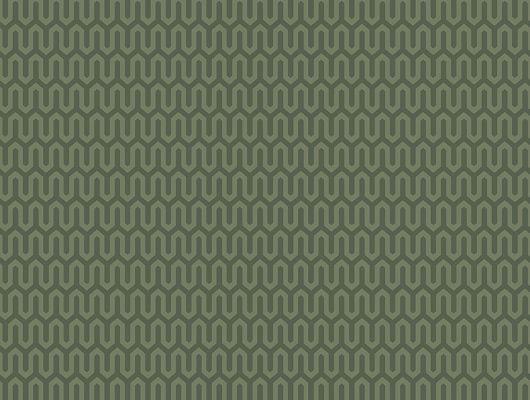 Флизелиновые обои из Швеции коллекция Scandinavian Designers III от Borastapeter под названием  YPSILON.Классический геометрический рисунок в виде  зигзагообразной линии  в  глубоком зеленом цвете., Scandinavian Designers III, Обои для гостиной, Обои для кабинета, Флизелиновые обои