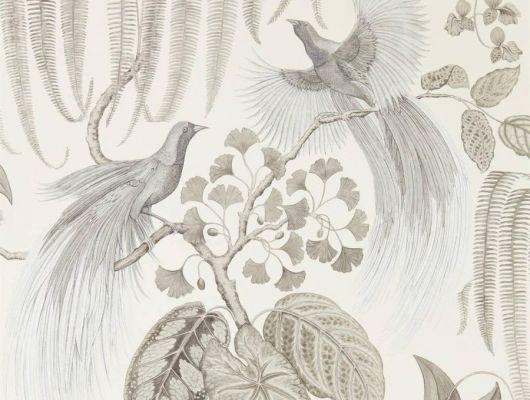 Заказать дизайнерские обои арт. 216652 из коллекции The Glasshouse от Sanderson с рисунком райских птиц в черно-белых тонах с бесплатной доставкой до дома, The Glasshouse, Обои для гостиной, Обои для спальни, Обои с цветами