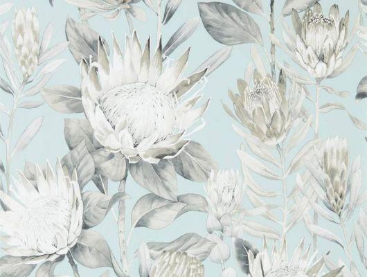 Обои Sanderson коллекция The Glasshouse дизайн King Protea арт. 216645, The Glasshouse, Обои для гостиной, Обои для спальни, Обои с цветами