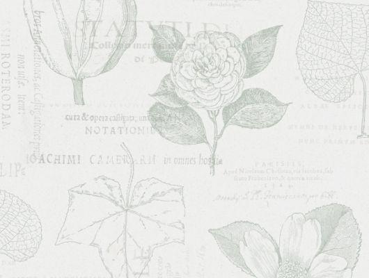 Флизелиновые обои из Швеции коллекция Northern FEELINGS от Collection For Walls под названием Botanical. Рисунок обоев выполнен в стиле ботанические иллюстрации зеленого цвета на светлом фоне. Обои для кухни, обои для гостиной. Купить обои, большой ассортимент, бесплатная доставка, Northern FEELINGS, Обои для гостиной, Обои для кабинета, Обои для кухни, Обои для спальни, Флизелиновые обои