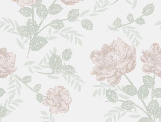 Флизелиновые обои из Швеции коллекция Northern FEELINGS от Collection For Walls под названием Roses. Крупные розовые бутоны светло-розового цвета на светлом фоне. Обои для спальни, обои для гостиной. Купить обои, большой ассортимент, бесплатная доставка, Northern FEELINGS, Архив, Обои для гостиной, Обои для кухни, Обои для спальни, Флизелиновые обои